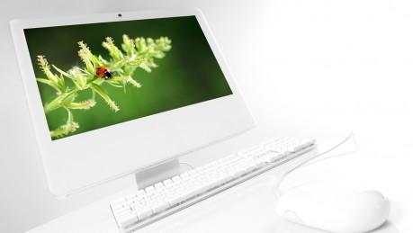 Apple Repair / Mac Repair